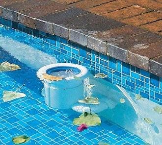 PoolSkim Automatic Pool Cleaner