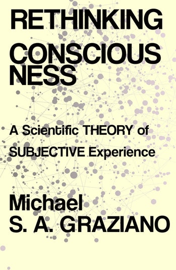 'Rethinking Consciousness'