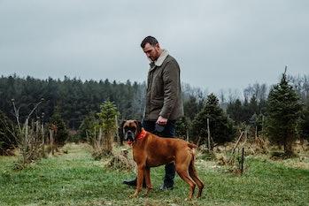 pet dog, owner