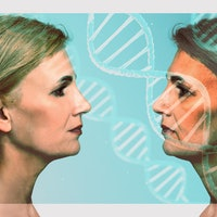 Study pinpoints biological link between therapy and longevity