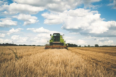 wheat harvest machine tractor