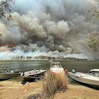 Bots are pushing conspiracy theories about Australia's fires