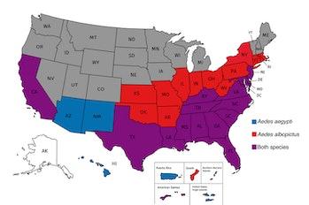 mosquitos zika in the US