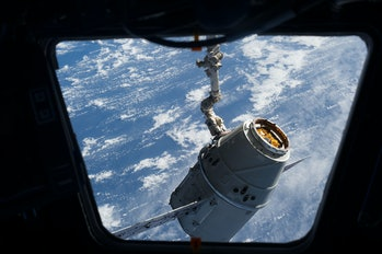cupola dragon photo