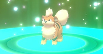 growlithe pokemon sword and shield