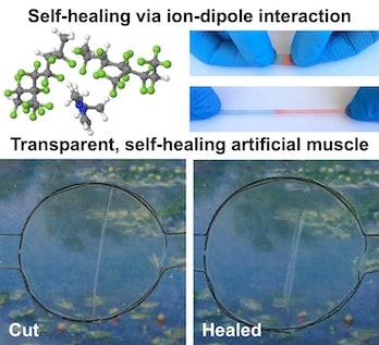 Self-Healing Ionic Conudctor
