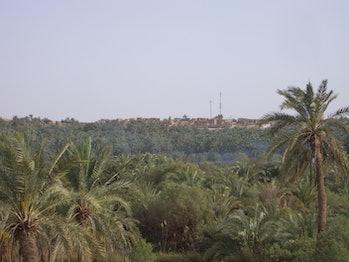 Bahariya Village through the Forest