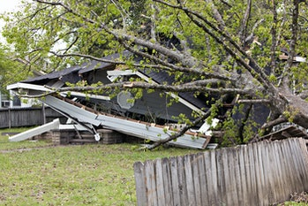 fallen tree on destroyed house next to a fence