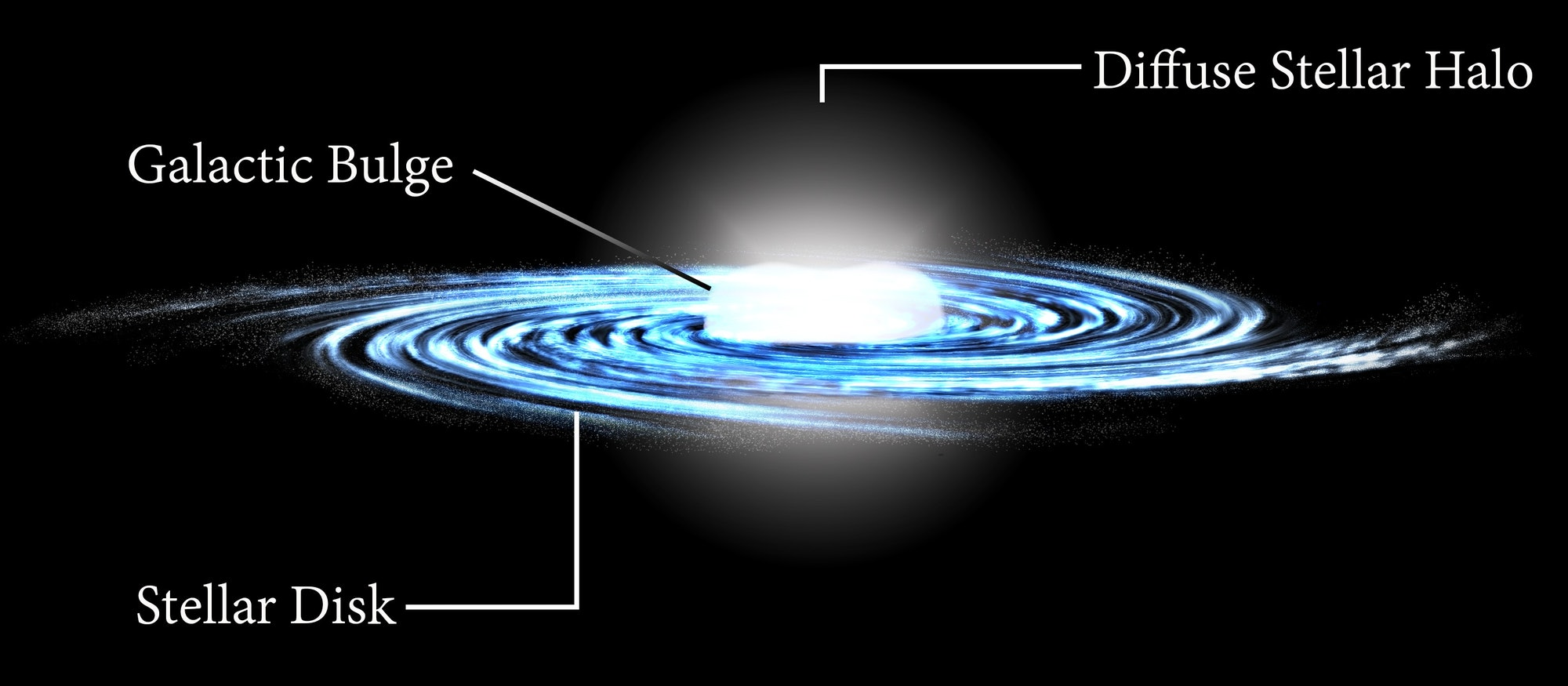 An artist's impression of the Milky Way, with the Galactic bulge at the center.