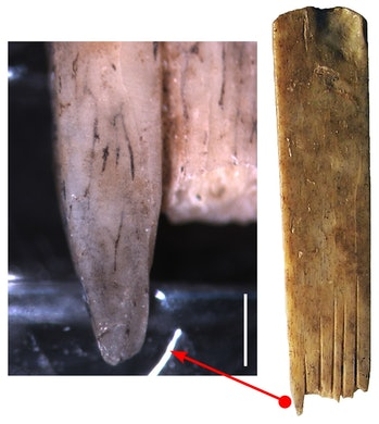 Ink staining on one of the human bone combs