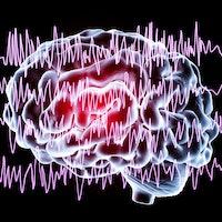 Spontaneous 'micro-earthquakes' in the brain are helping you sleep