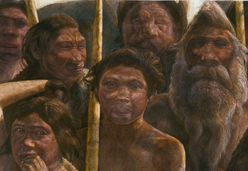 Sima de los Huesos hominins