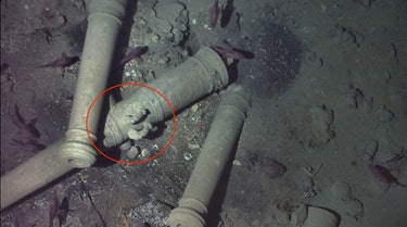 REMUS 6000 photographed these cannons with playful dolphins sculpted onto them, confirming the wreckage was that of the San José.