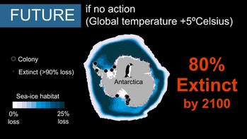 global carbon dioxide emissions Emperor Penguin colonies