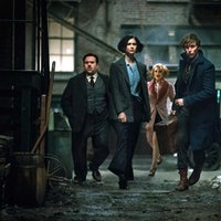 These American 'Fantastic Beasts' Characters Will Head to Europe in Sequel