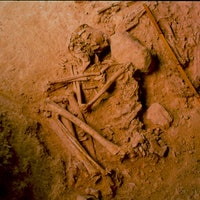 Ancient DNA Reveals Iberian Resistance to Indo-European Invasions