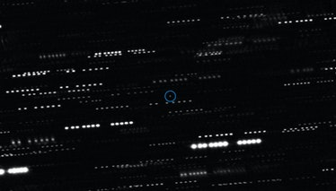 This image shows the interstellar object Oumuamua (circled). It is surrounded by the trails of faint stars that are smeared as the telescopes tracked the moving comet.