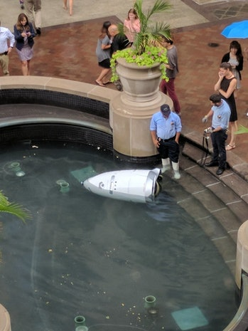 Knightscope k5 security robot fountain drown mall