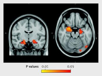 fMRI moderate alcohol