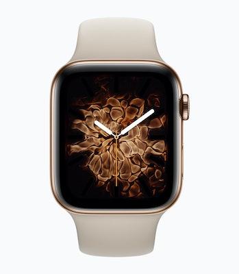 Apple Series 4 Watch