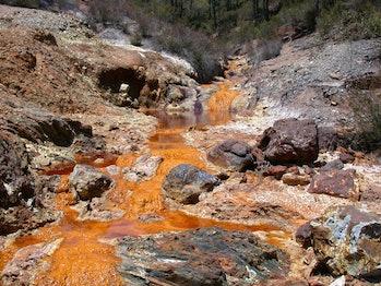 acide mine, archaea
