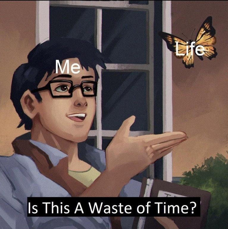 time pigeon meme