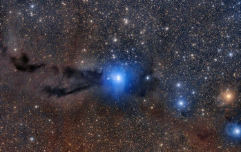 A dark cloud of cosmic dust snakes across this spectacular wide field image, illuminated by the brilliant light of new stars.
