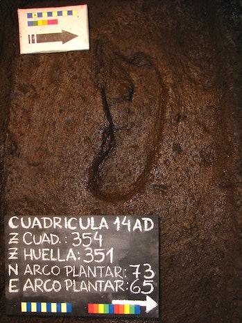 ancient footprint