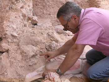 Dr. Jean-Jacques Hublin on first seeing the new finds at Jebel Irhoud (Morocco). He is pointing to the crushed human skull (Irhoud 10) whose orbits are visible just beyond his finger tip (Picture credit: Shannon McPherron, MPI EVA Leipzig, License: CC-BY-SA 2.0).