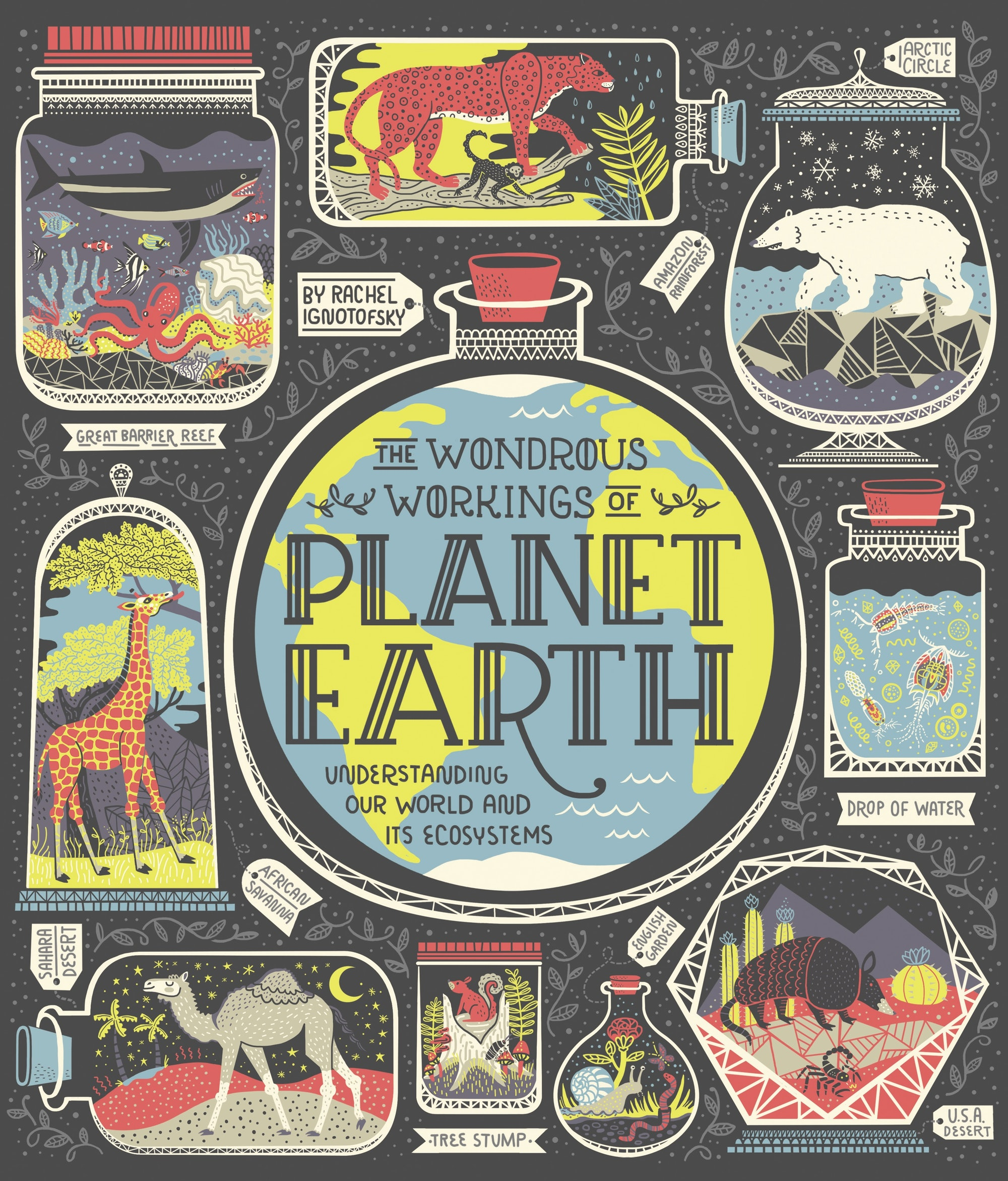 Wondrous Workings of Planet Earth Rachel Ignotofsky