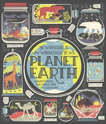Wondrous Workings of Planet Earth Rachel Ignotofsky