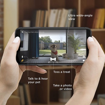Petcube Bites 2: Smart Pet Camera with Treat Dispenser