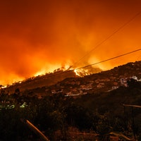 USDA Asks Staff to Use 'Weather Extremes,' Not 'Climate Change'