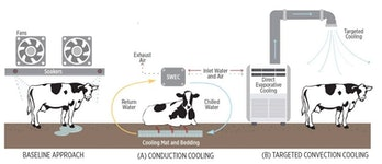 Options for cooling cows using water-filled mats (A) or air blown through fabric ducts (B).