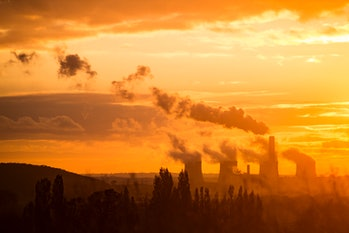 Are pollutants harming the anti-pollutants?