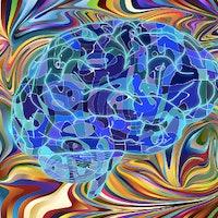 LSD Gives Congenitally Blind Man Synesthesia-Like Hallucinations