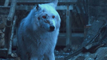 Game of Thrones Ghost
