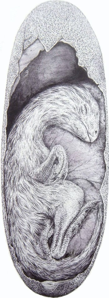 The drawing shows the approximate size of the Beibeilong embryo inside a Macroelongatoolithus egg (drawn by Vladimir Rimbala).