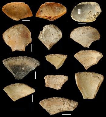 clamshell tools, Neanderthals