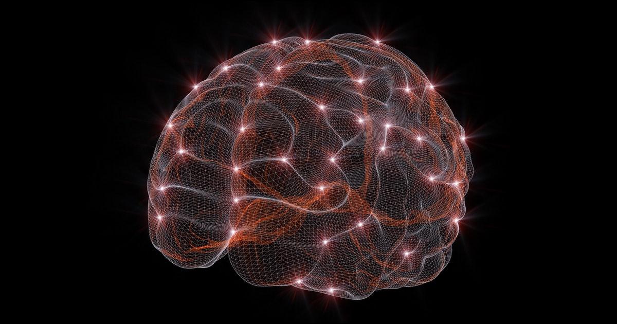 Secrets of the Smart: Hacks to Improve Brain Power