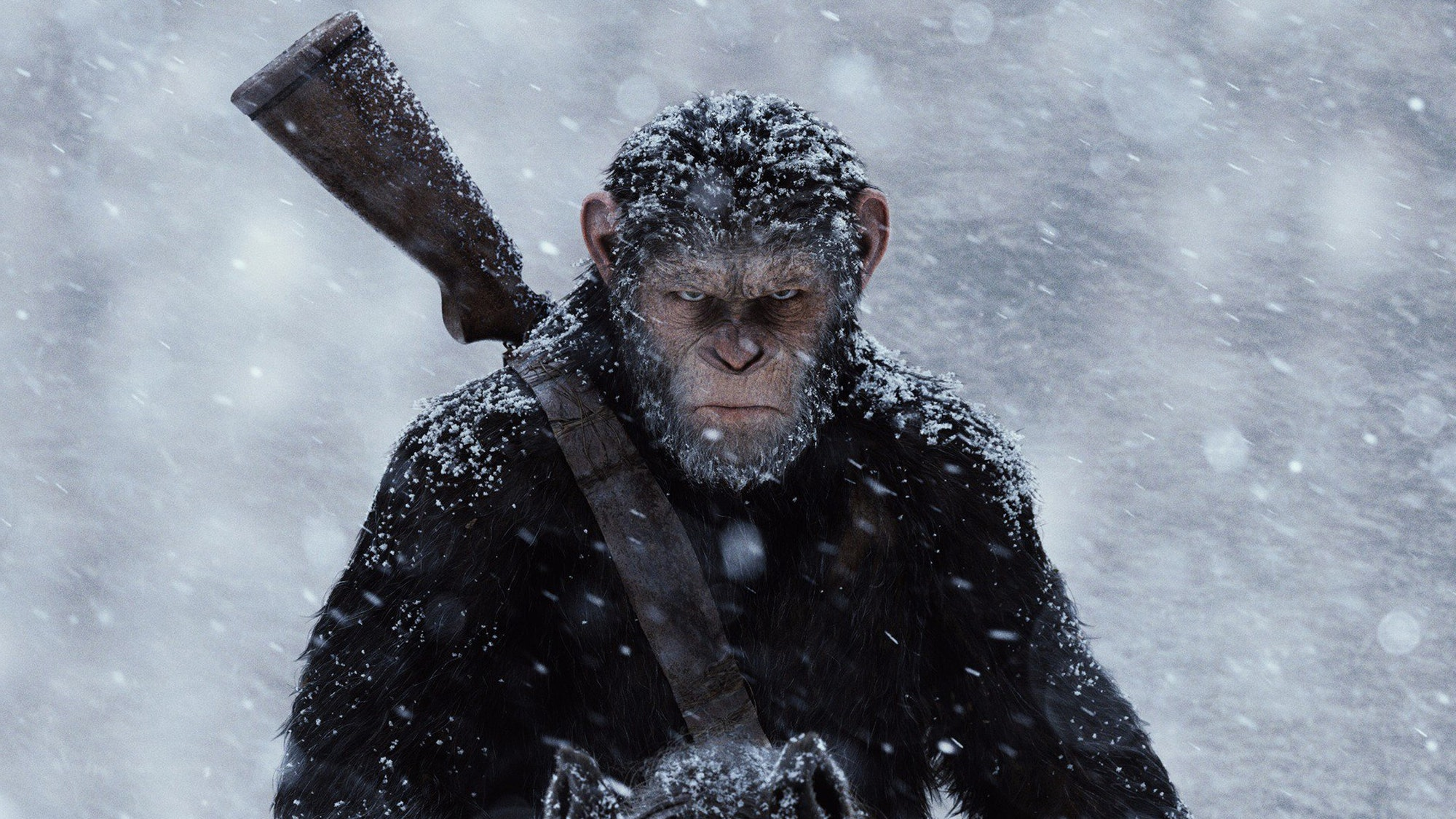 War for the planet of the apes fighting battle caesar andy serkis