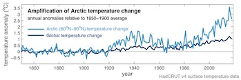 Amplification of climate change in the Arctic.