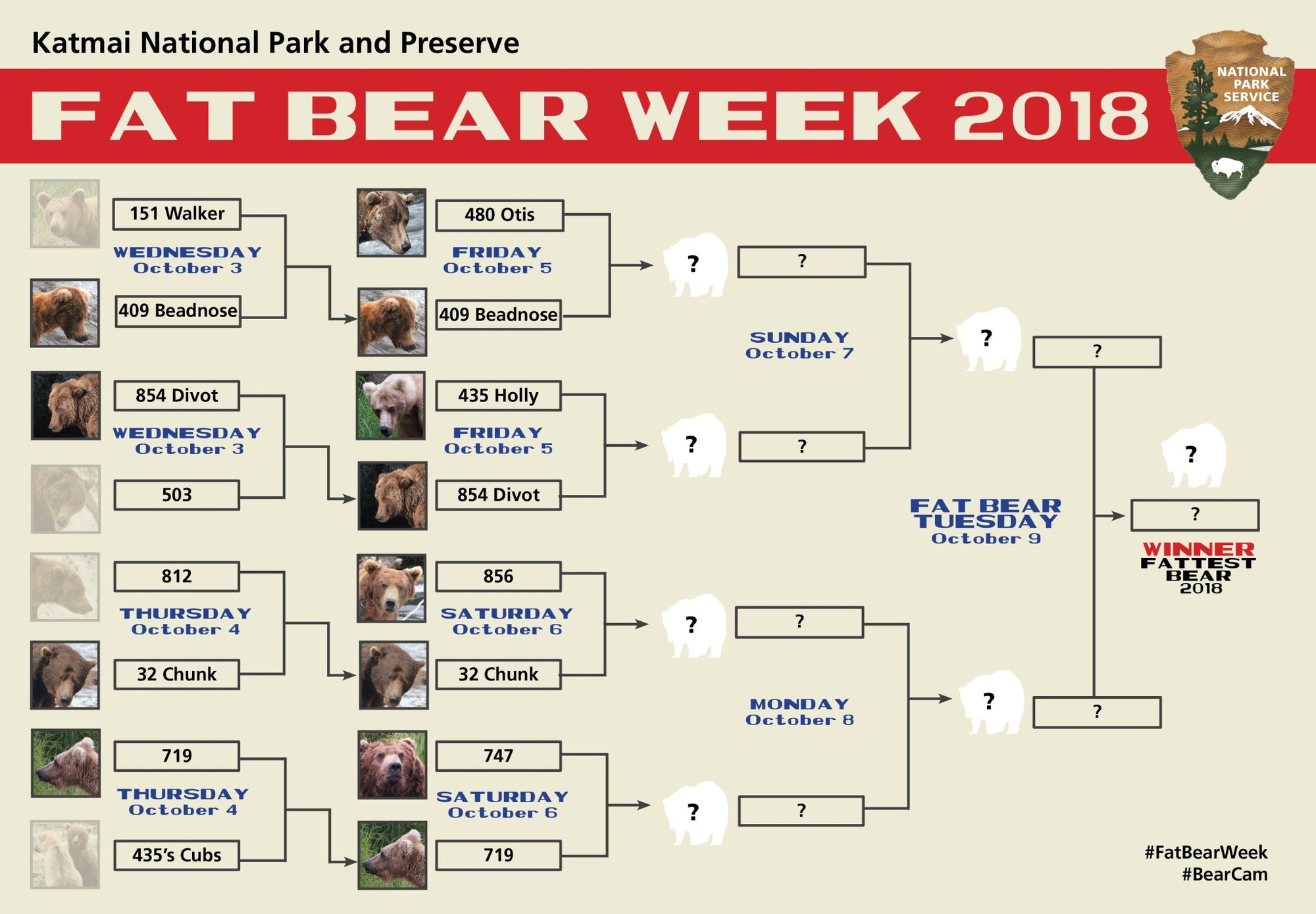 The 2018 Fat Bear Week Bracket. As you can see, bear 409, aka Beadnose, faced off against Otis on Friday, and as of 6:34 p.m., was in the lead on Facebook voting.