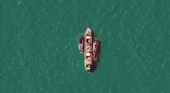 The WorldView-3 satellite captured views of a commercial fishing vessel accepting salve-caught cargo.