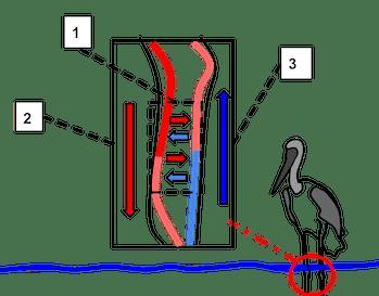countercurrent heat exchange