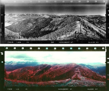 Huckleberry Mountain in Glacier National Park after a fire on July 30, 1935 (top) and July 9, 2009 (bottom).