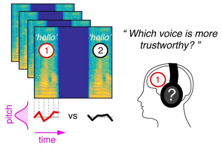 Method used to model mental representations of vocal intonation.