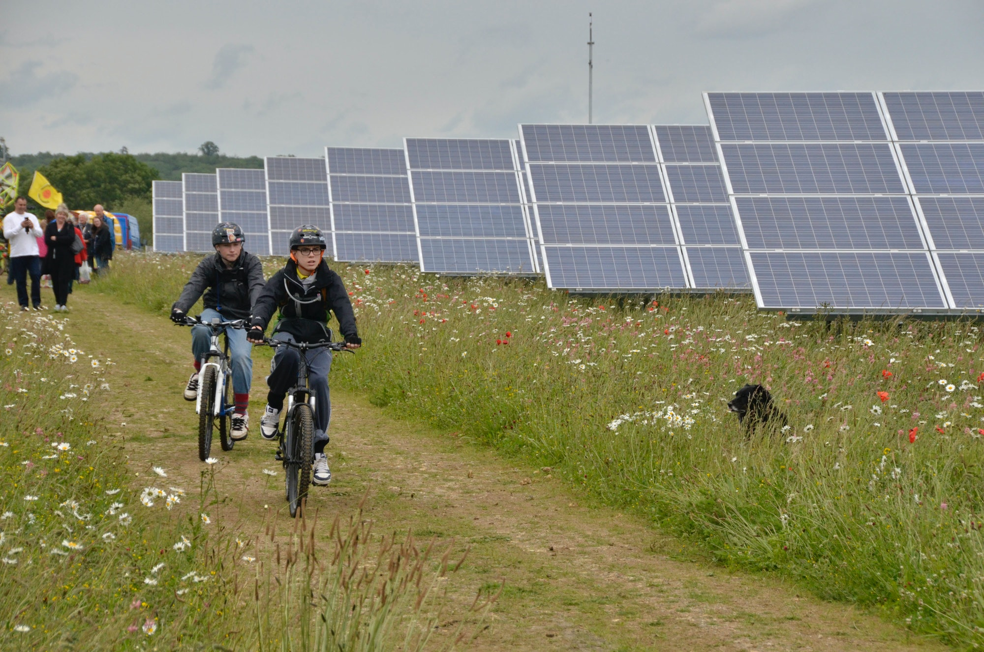 Visitors at a Westmill Solar Co-operative Open Day at Westmill Solar Park