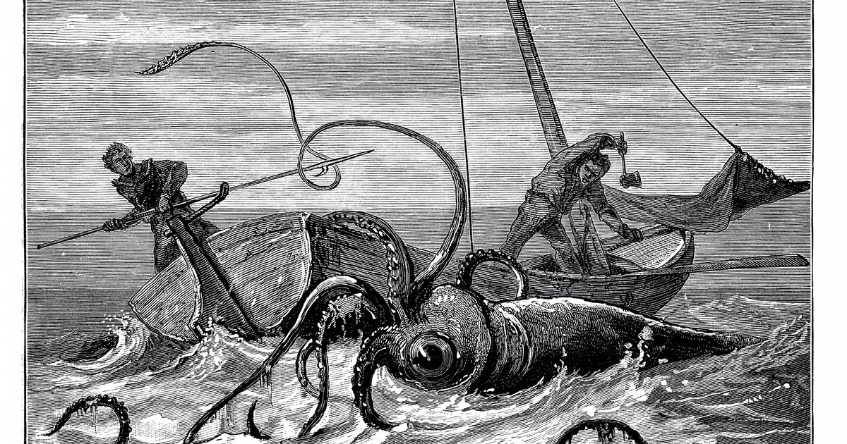 Unprecedented gene study suggests giant squids may be massively intelligent