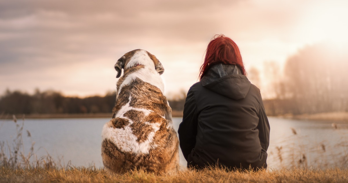The Science of Dog Feelings: Why Humans Are Bad at Reading Their Pets